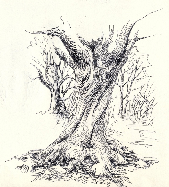 42 tree trunk