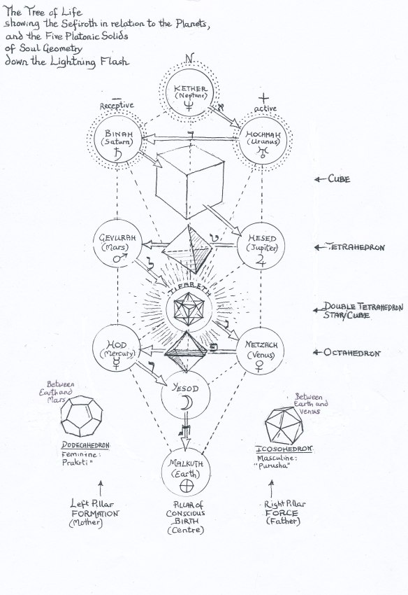 Kepler's Platonic solids on the Tree of Life