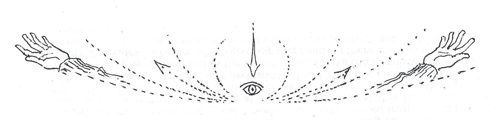 Mouni sadhu meditation