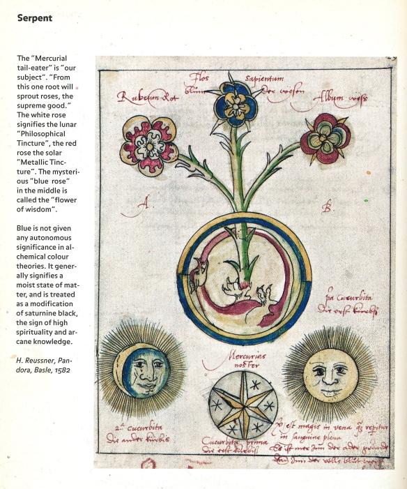 Ourobouros flower - from Alexander Roob's Alchemy & Mysticism