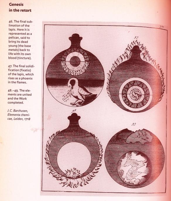 pelican & phoenix in flask, Roob