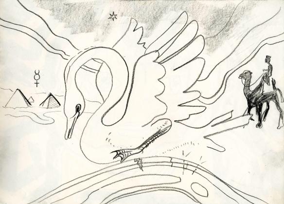 desert swan & camel