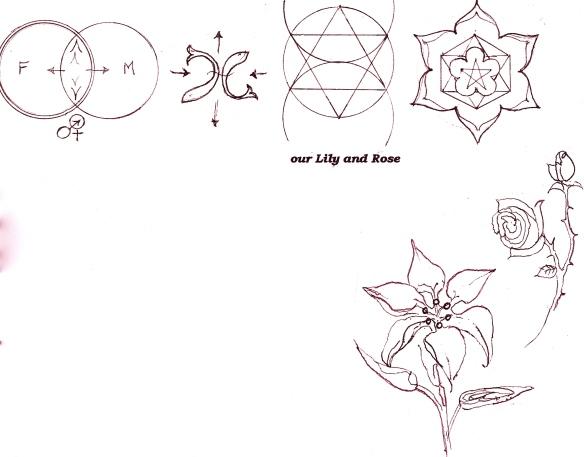 Lilyrose 1 copy
