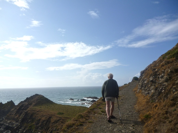 coastal path, near Hartland