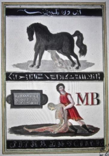 trinosofia 9 illustration